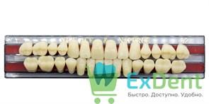 Гарнитур акриловых зубов C2, T5 Gloria New Ace (28 шт)
