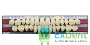 Гарнитур акриловых зубов C1, T4 Gloria New Ace (28 шт)