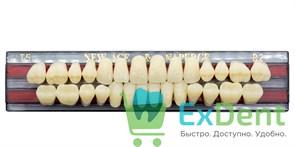Гарнитур акриловых зубов B2, T5 Gloria New Ace (28 шт)