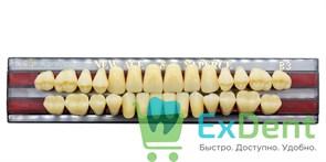 Гарнитур акриловых зубов B3, T4 Gloria New Ace (28 шт)