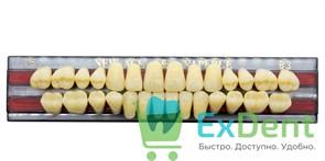 Гарнитур акриловых зубов B3, T5 Gloria New Ace (28 шт)