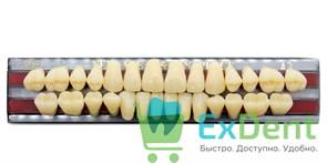 Гарнитур акриловых зубов A3, TL6, Gloria New Ace (28 шт)