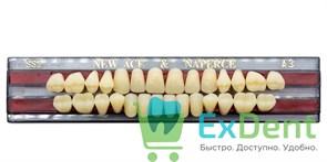 Гарнитур акриловых зубов A3, SS2 Gloria New Ace (28 шт)