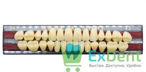 Гарнитур акриловых зубов A3, S4 Gloria New Ace (28 шт)