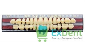 Гарнитур акриловых зубов A2, S2 Gloria New Ace (28 шт)