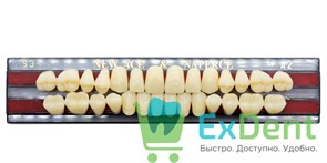 Гарнитур акриловых зубов A2, S3 Gloria New Ace (28 шт)