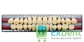 Гарнитур акриловых зубов A2, S5 Gloria New Ace (28 шт)