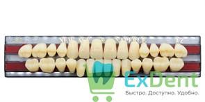 Гарнитур акриловых зубов A2, S6 Gloria New Ace (28 шт)