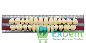 Гарнитур акриловых зубов A2, T3 Gloria New Ace (28 шт)