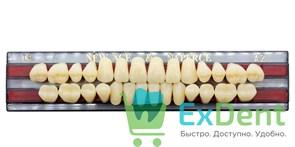 Гарнитур акриловых зубов A2, T4 Gloria New Ace (28 шт)
