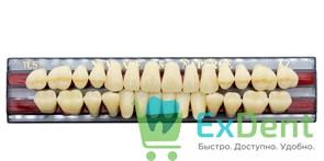 Гарнитур акриловых зубов A2, TL5 Gloria New Ace (28 шт)