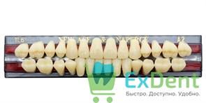 Гарнитур акриловых зубов A2, TL6 Gloria New Ace (28 шт)