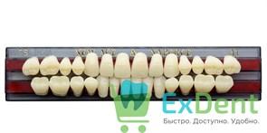 Гарнитур акриловых зубов A1, T5 Gloria New Ace (28 шт)