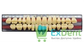 Гарнитур акриловых зубов A3,5, O5 Gloria New Ace (28 шт)